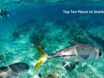 Top Ten Places to Snorkel