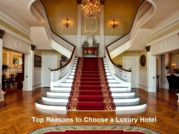 Top Reasons to Choose a Luxury Hotel