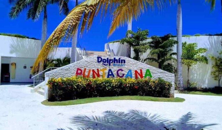 Dolphin Discovery es el único parque en República Dominicana con la acreditación AZA