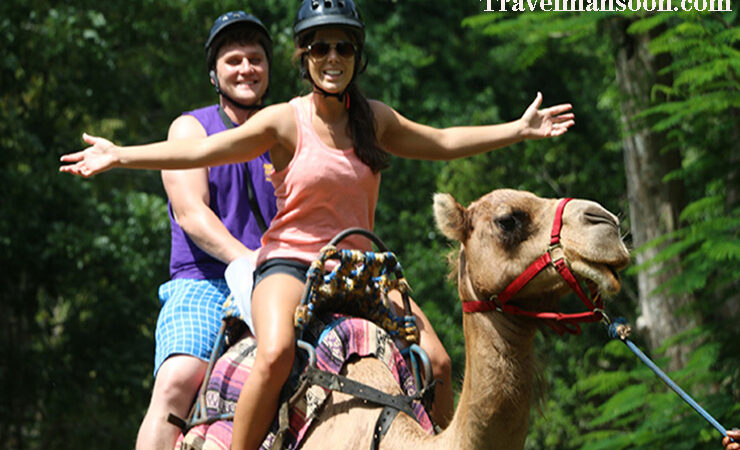 Visiting the world's best adventure park- Yaaman Adventure Park